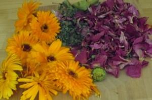 fleurs médicinales